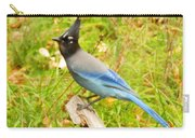 Mountain Blue Jay Carry-all Pouch