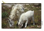 Mountain Goat Nanny And Kid Foraging At Columbine Lake - Weminuche Wilderness - Colorado Carry-all Pouch