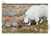 Mountain Goats On Mount Bierstadt In The Arapahoe National Fores Carry-all Pouch
