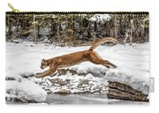 Mountain Lion Leap Carry-all Pouch