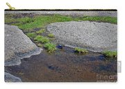 Mountain Sanderling Carry-all Pouch