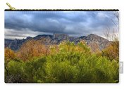 Mountain Valley No33 Carry-all Pouch