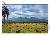 Mountain View After Rain Carry-all Pouch
