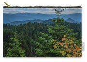 Mountains Around Priest Lake Carry-all Pouch