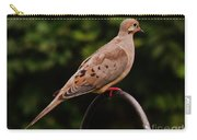 Good Morning Mourning Dove  Carry-all Pouch