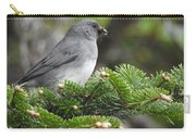 Mt Mitchell Junco Carry-all Pouch