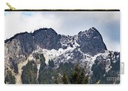 Mt. Si South View Carry-all Pouch