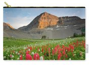 Mt Timpanogos Carry-all Pouch