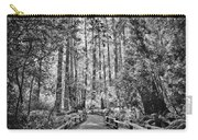 Muir Woods Bw Carry-all Pouch