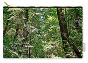 Muir Woods Study 22 Carry-all Pouch