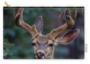Mule Deer In Velvet 02 Carry-all Pouch