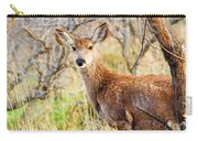 Mule Deer Posing  In The Colorado Spring Afternoon Carry-all Pouch