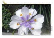 Multi-petal White Iris Flower. Very Unusual, Rare Form Carry-all Pouch