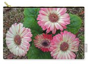 Multicolored Gerberas Carry-all Pouch