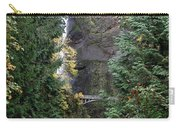 Multnomah Falls - 5 Carry-all Pouch