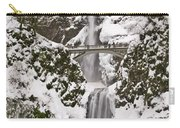 Multnomah Falls Winter Carry-all Pouch
