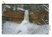 Munising Falls Frozen Carry-all Pouch
