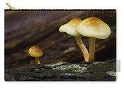 Mushroom Trio Carry-all Pouch