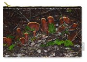 Mushrooms,log And Ferns Carry-all Pouch