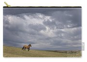 Mustang And Stormy Sky Carry-all Pouch