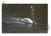 Mute Swan With Three Cygnets Following Carry-all Pouch