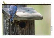 My First Bluebird Carry-all Pouch