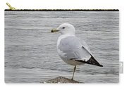 N Y C Water Gull Carry-all Pouch