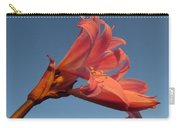 Naked Lady Carry-all Pouch