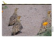 Namaqua Sandgrouse Carry-all Pouch