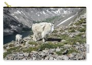 Nanny And Kid Goat #2 Carry-all Pouch