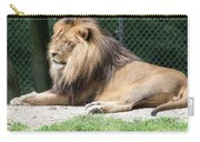 Nappin' Lion Carry-all Pouch
