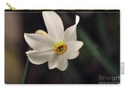Narciso Carry-all Pouch