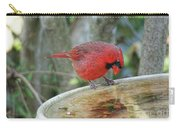 Narcissist Cardinal Carry-all Pouch