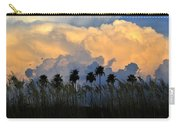 Native Florida Carry-all Pouch