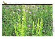 Native Prairie In Moraine Hills State Park Carry-all Pouch