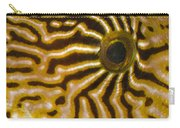 Natural Abstract Carry-all Pouch