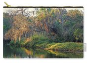 Natural Florida Landscape Carry-all Pouch