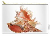 Natural Shell Collection On White Carry-all Pouch