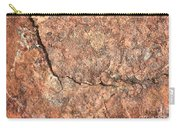 Nature Abstract - Cracked Carry-all Pouch