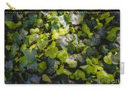 Nature Abstract 5 Carry-all Pouch