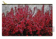 Nature As Art Carry-all Pouch