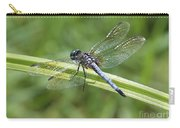 Nature Macro - Blue Dragonfly Carry-all Pouch