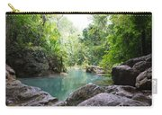 Nature Neto Carry-all Pouch