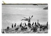 Nature Pelicans Rock  Carry-all Pouch