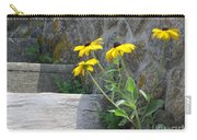 Nature Steps It Up Carry-all Pouch