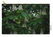 nature Ukraine blooming chestnuts Carry-all Pouch