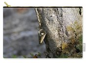 Nature's Detail Carry-all Pouch