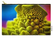Nature's Fractals Carry-all Pouch