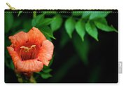 Natures Trumpet Carry-all Pouch