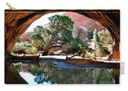 Navajo Arch Reflection Carry-all Pouch